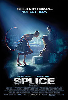 CCE Screening: Splice