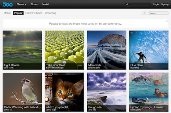 Which Photo Sharing Site is for You?
